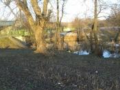 A za drzewami (zobaczcie sami) z dwoma mostami - widok przecudnej urody: wprost z nad lustra wody.