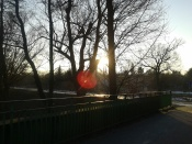 Kiedy słońce znów chciało fotkę.