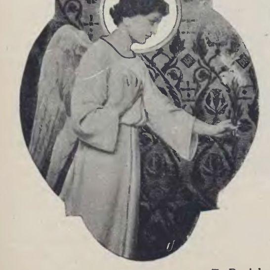 Tygodnik Ilustrowany 1902 nr 31.