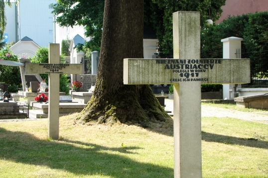 lublin_-_ul-_lipowa_-_cmentarz_wojskowy_-_krzyze_nieznanych_zolnierzy_austriackich_-_dsc00371_v9