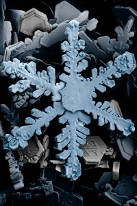 snow_crystals_2b